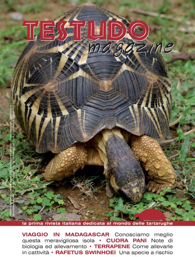 Testudo Magazine